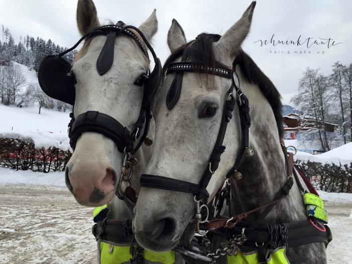 Reise, Reisen, Travel, unterwegs, Kitzbühel, Alpen, Tirol, Österreich, Berge, Schnee, Winter, Pferde, Kutschfahrt