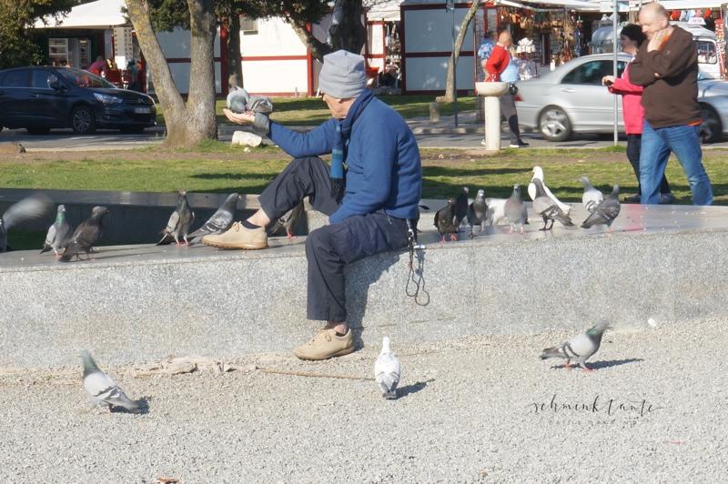 Menschen, Mann, Tauben, Vögel, Tiere, füttern, Lissabon, Reise, Schminktante